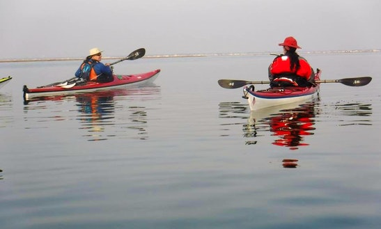 Kayak Rentals In Babylon