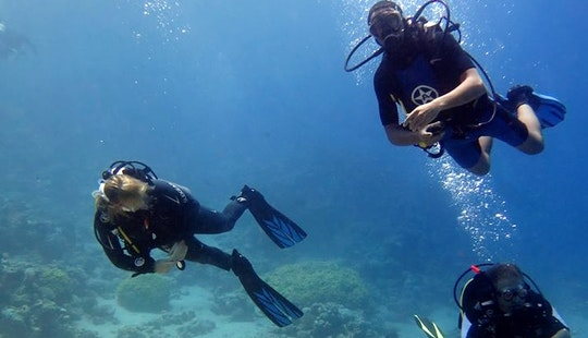 Beginner & Speciality Courses In Dahab