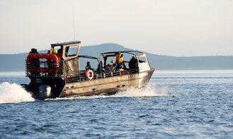 "38' ""The Blackfish Express"" Tours in Eastsound, Washington"