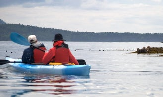 3-Hours Point Doughty Kayak Trip on Orcas Island in Eastsound, Washington