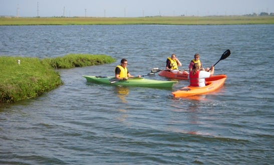 Experience A 2 Hour Single Kayak Tour In Little Egg Harbor Township, New Jersey