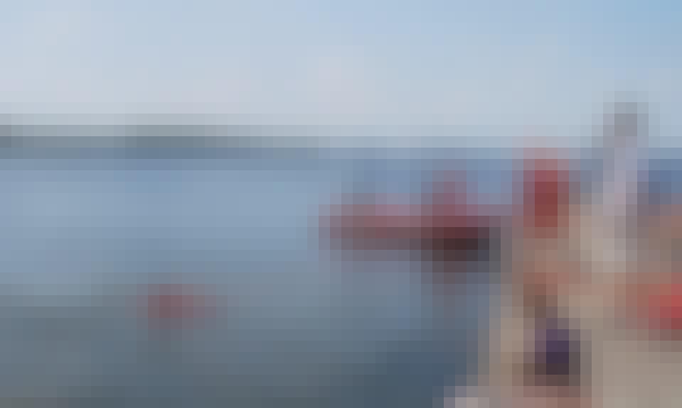 Boat Scuba Diving Daily Trips in Tallinn