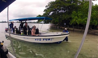 Boat Diving Trips & PADI Courses in Kavieng