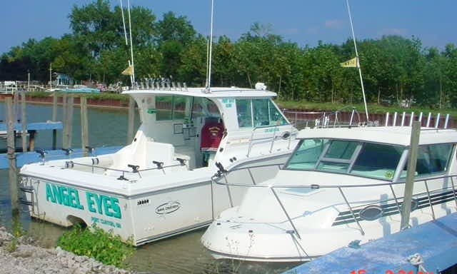 30' Baha King Cat Yacht For Fishing Charter in Erie Township, Ohio