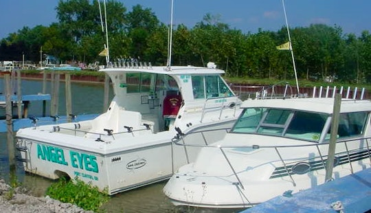 Inboard Propulsion Fishing Charter In Erie Township