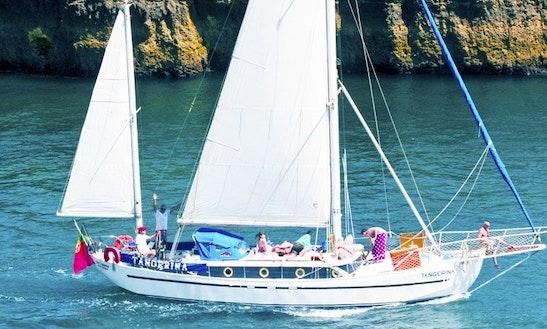 Cruising In Albufeira On 45ft Ketch, Faro