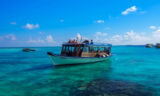 Daily Boat Diving Trips For Beginners In Male Male, Maldives