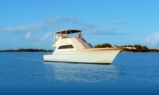 Fishing Charter On 48ft 'reel Adiction' Yacht In Somerset Village, Bermuda