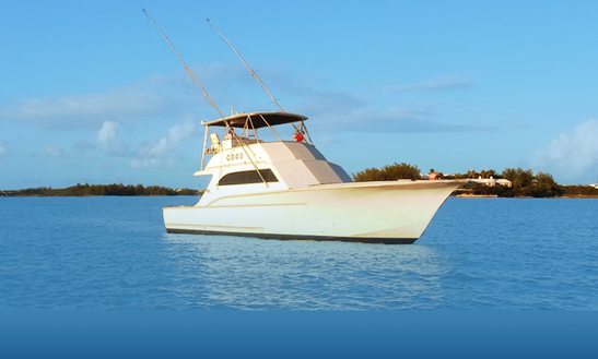 Fishing Charter On 48ft 'reel Adiction' Yacht In Somerset Village, Bermuda