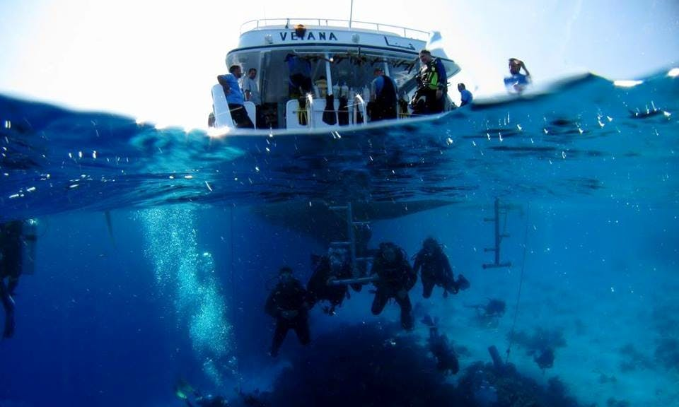 Diving Trips in Hurghada, Egypt