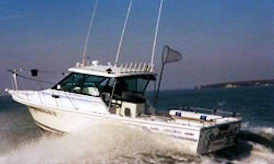 Sport Fisherman Fishing Charters In Jerusalem Township, Ohio