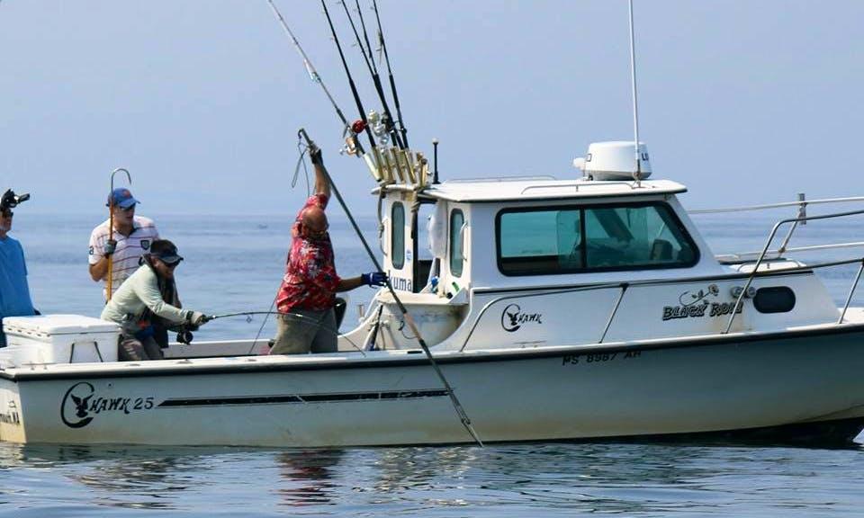 "Enjoy Fishing On 25'  ""Black Rose"" Cuddy Cabin In Gosnold, Massachusetts"