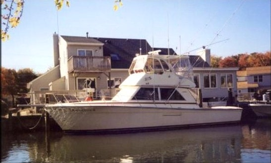 44' Henriques Sport Fisherman In Brick, New Jersey United States