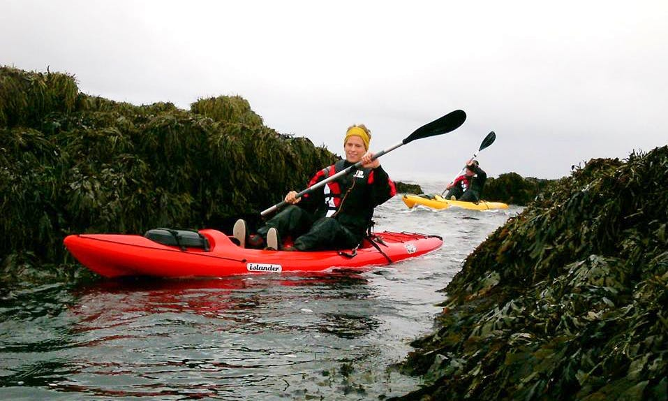 Kayaking Guided Tours in Vogar - Iceland
