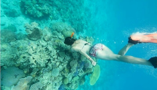Snorkeling Tour In Luganville
