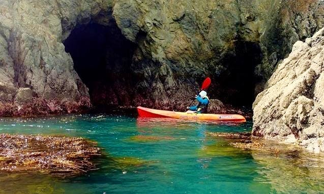 Kayak and Snorkeling Tour In Tauranga