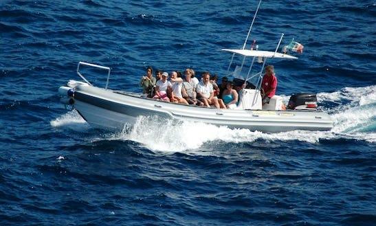 Rib Transport Service In Isola Del Giglio