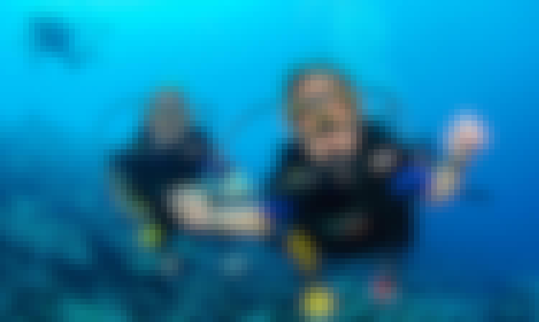 Diving trips in Kuala Besut