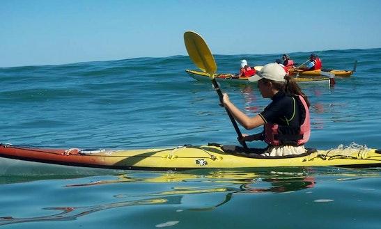 Single Kayak Tour In Itxassou