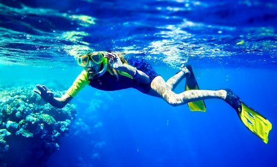 Snorkeling Tour In Controne