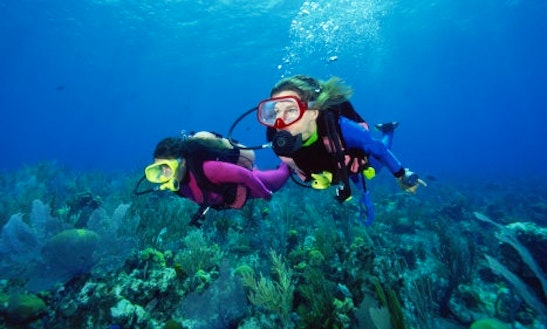 Scuba Diving Tours In Controne