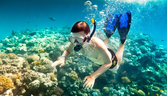 Daily Diving Trips In Langkawi