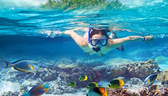 Book This Exciting Snorkeling Tour In Kuta, Indonesia