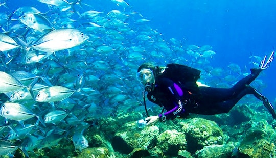 Experience Diving In Famous Dive Sites In Indonesia