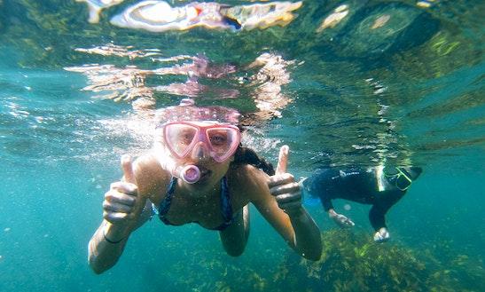 Snorkeling Trips In Kota Kinabalu