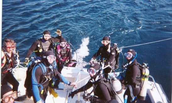 Diving Trips In Gainesville, Florida