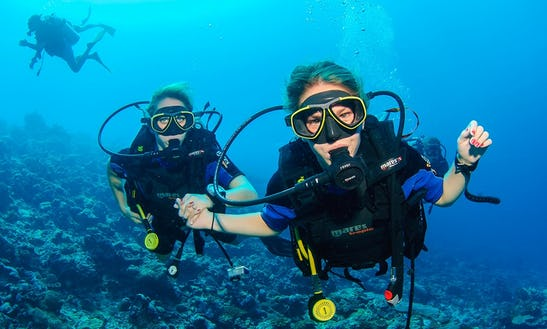 Boat Diving Trips And Padi Courses In Kuala Besut