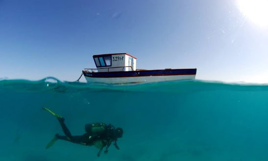 Boat Diving Trips To Cape Verde's Famous Dive Sites