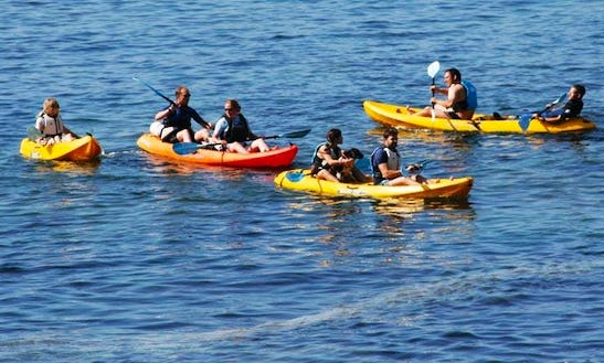 Tandem Sit-on-top Kayak For Hire In Kenmare,