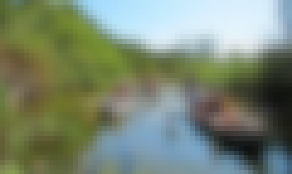 River Safari Canoe Tour On Addo River