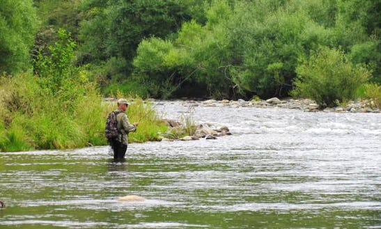 Guided Fly Fishing Trips In Nelson