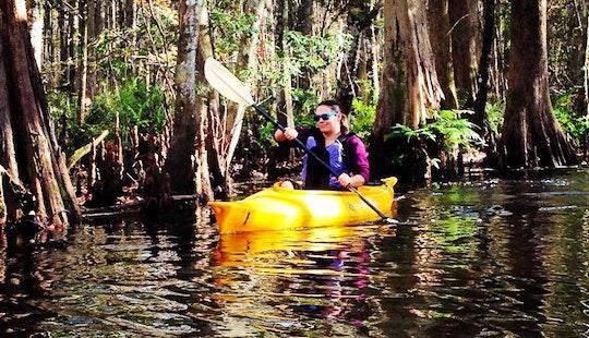 12' Single Kayak Rental & Tours In Kissimmee, Florida