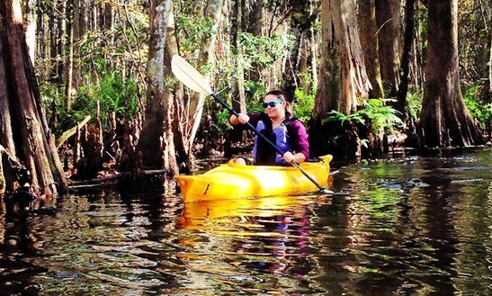 12' Single Kayak Rental & Tours In Kissimmee, Florida