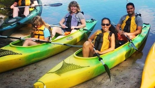 Guided 2-hour Out And Back Eco Tour And Kayak Rental In Kissimmee, Florida