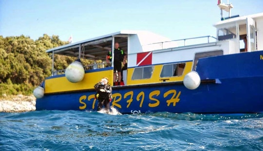 'starfish' Boat Diving Trips & Courses In Vrsar