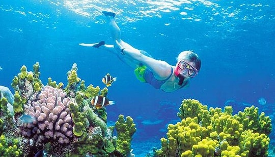 Snorkeling Adventure Tour In Kuta Utara, Indonesia