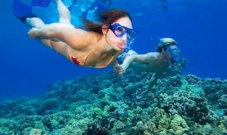 Snorkeling Trips in Onna-son