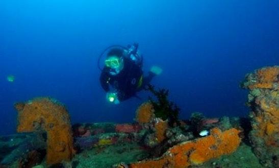 Diving In Labuanbajo - Indonesia