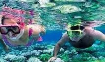 Snorkeling in Ciputat Timur