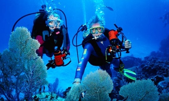 Diving Trips & Courses  In Semporna