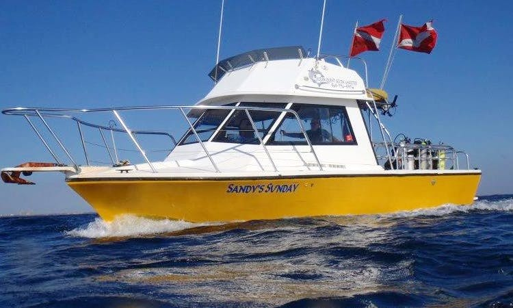 """""""Sandy's Sunday"""" Boat Diving in Riviera Beach - Florida USA"""