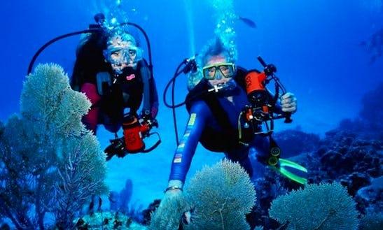Diving In Ciputat Timur