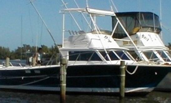Fishing Charter On 34' Surfrider Boat In Sebastian, Florida