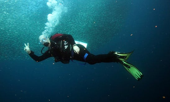 Diving Trips And Courses In Olsztyn