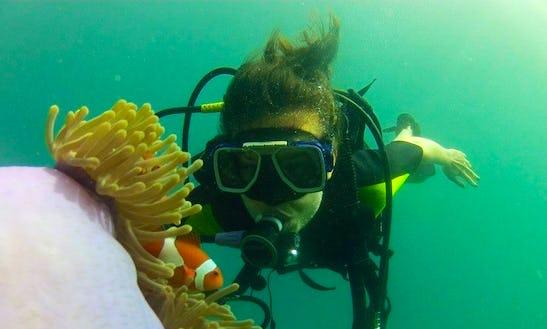 Discover Scuba Diving In Coron, Palawan