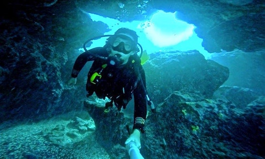 Diving Trips And Courses In Lord Howe Island